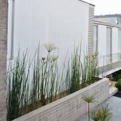 CASA P65: Jardines de estilo asiático por ESTUDIO BASE ARQUITECTOS