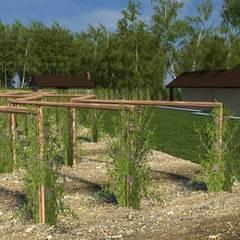 Alambiques y viñedos: Jardines de estilo moderno por Nicolás Bello