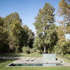 Dangle Byrd House: modern Pool by Koko Architecture + Design