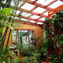 Diseño y Habilitación Local Comercial Jardin Vortice: Jardines de estilo rústico por Vortice Design Ltda