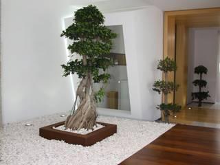 RS Design House : Habitações translation missing: pt.style.habitações.minimalista por Risco Singular - Arquitectura Lda