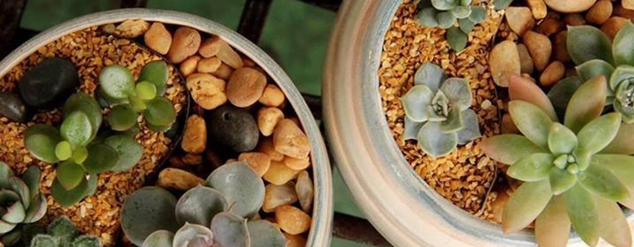 53 ideias simples para jardins pequenos e quintais sem uso for Jardins pequenos e simples