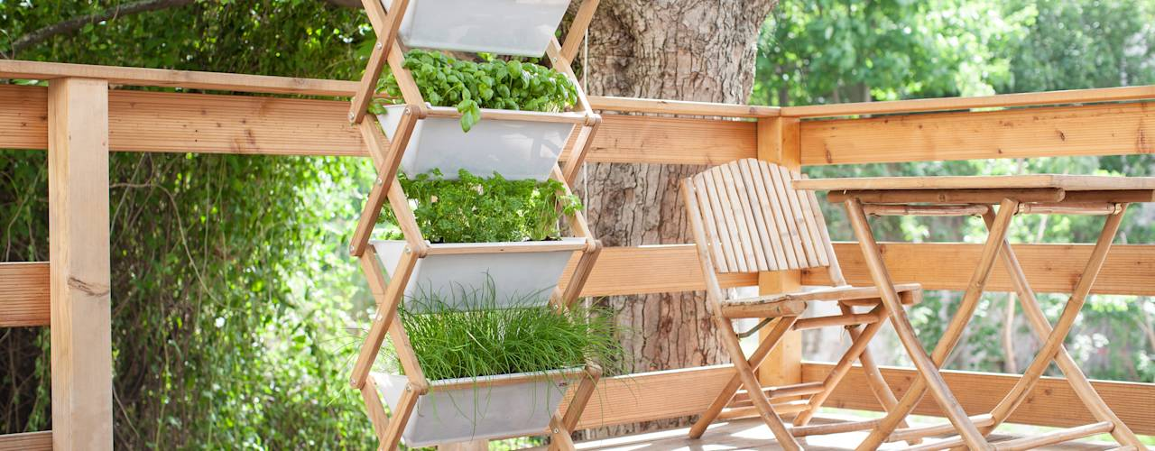 Grow Up Create Your Own Vertical Garden