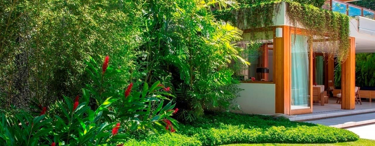 plantas jardins tropicais : plantas jardins tropicais:10 jardins maravilhosos para a frente da casa 10 jardins