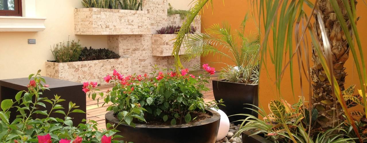 12 jardines peque os para copiar en casa for Como hacer un jardin interior en casa