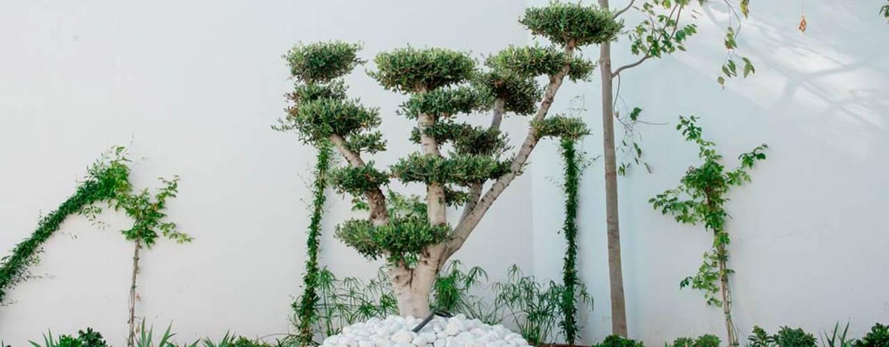 6 peque os y hermosos jardines que puedes hacer t mismo for Jardines pequenos y hermosos
