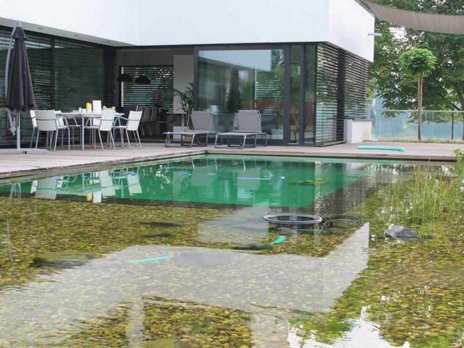 Moderner garten bilder homify for Pool design gmbh