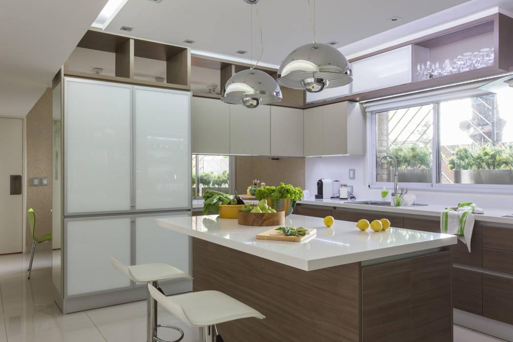 Fotos de cocinas de estilo moderno detalle de muebles de for Muebles de cocina modernos fotos