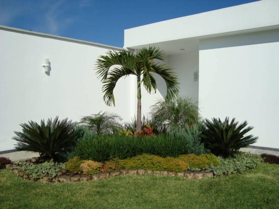 Fotos de jardines de estilo topical palma kerpis homify - Fotos de jardines modernos minimalistas ...