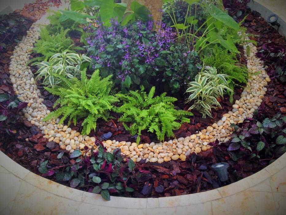 Fotos de jardins modernos por ecoentorno paisajismo urbano - Ideas para jardines pequenos fotos ...