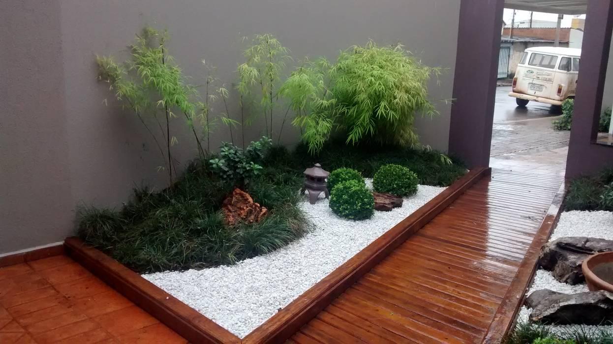Fotos de jardins modernos projeto paisagismo homify for Plantas modernas para jardin