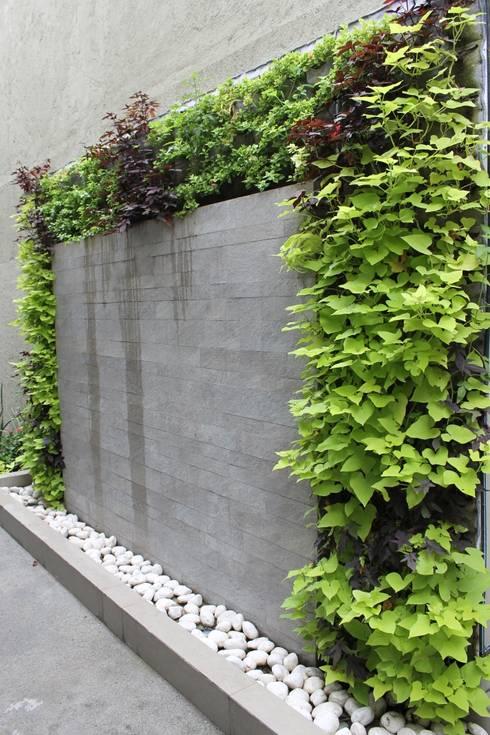 10 bardas de piedra que delimitar n tu terreno con estilo for Plantas para muros verdes verticales