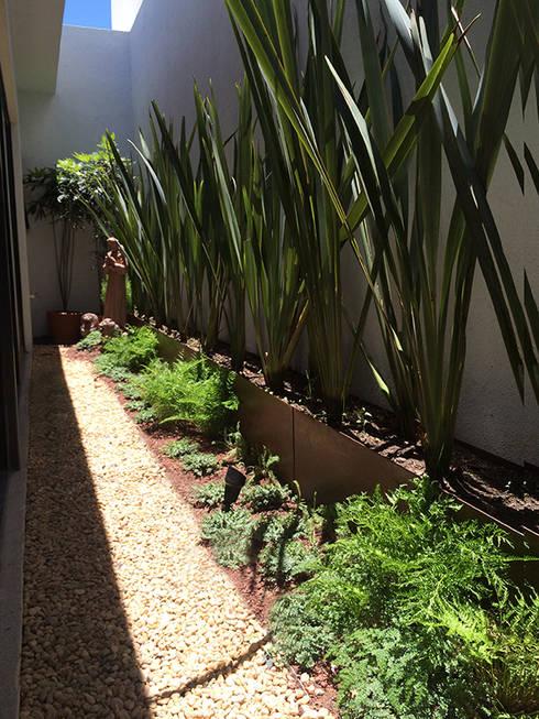 8 ideas para crear un jard n peque o for Jardines interiores modernos