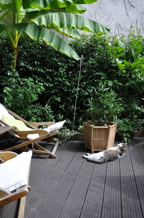 comment cr er un jardin adapt aux chiens. Black Bedroom Furniture Sets. Home Design Ideas