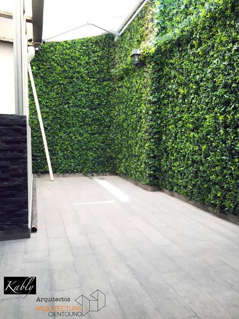 Terraza Temistocles: Jardines de estilo minimalista por Arquitectura101 + Kably Arquitectos