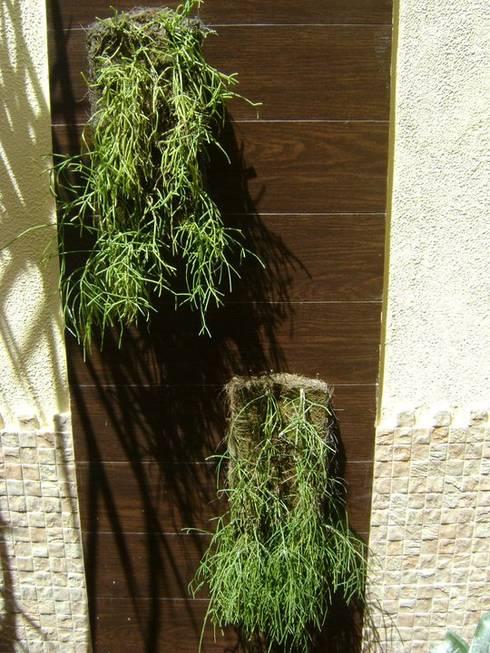 아름다운 수직 정원을 만드는 37가지 디자인 아이디어