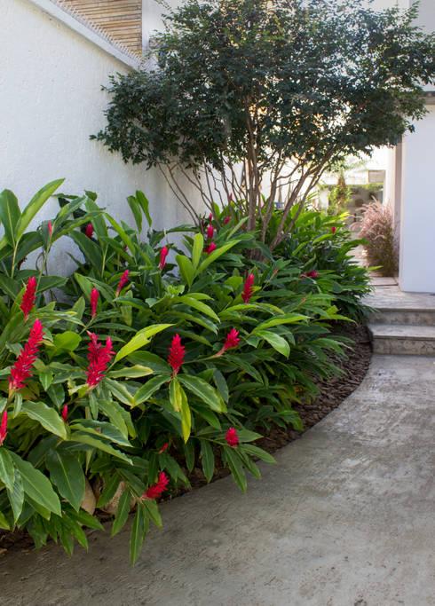 6 jardins para a entrada da sua casa pequenos e bonitos for Jardines chinos pequenos
