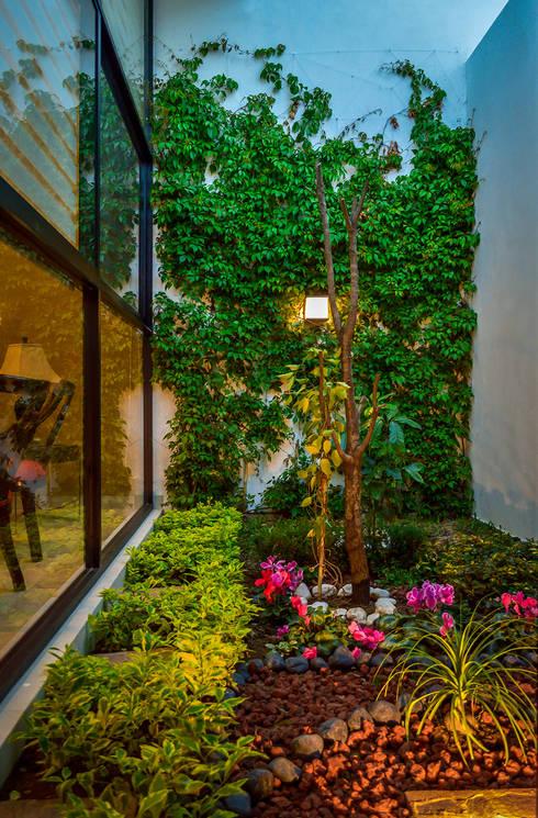 modern Garden by Wowa