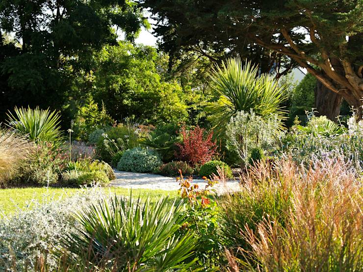 cultivez l 39 exotisme de votre jardin. Black Bedroom Furniture Sets. Home Design Ideas