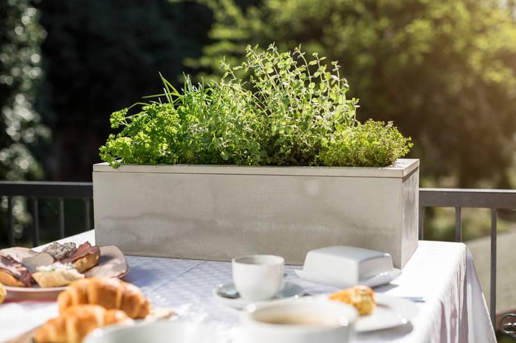 pflanzenk bel aus beton die nicht nur deinen garten versch nern. Black Bedroom Furniture Sets. Home Design Ideas