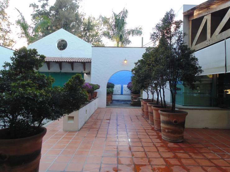 Huerta en Tesistán: Casas de estilo rural por Taller Luis Esquinca