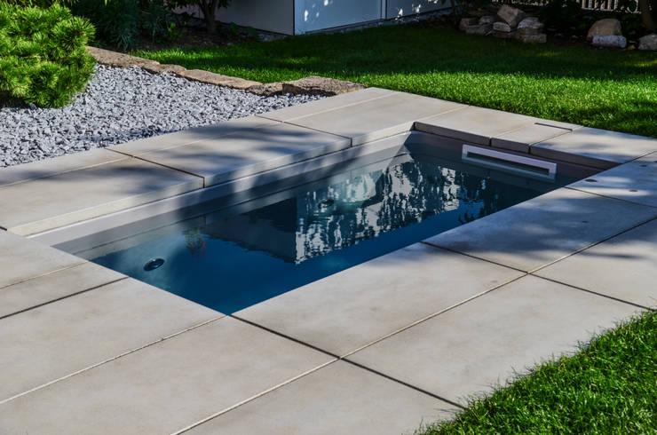 Tauchbecken: @wat Meersalzwasser-Tauchbecken / Minipool Von Design