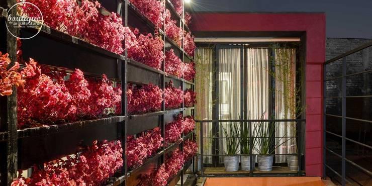 Estudio Coyoacan: Jardines de estilo moderno por Boutique de Arquitectura1