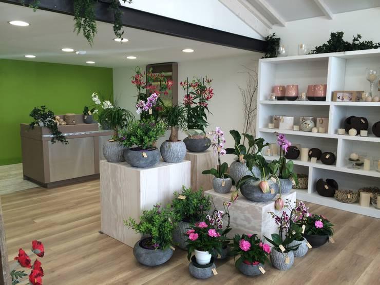 agencement interieur magasin fleuriste par ineo concept homify. Black Bedroom Furniture Sets. Home Design Ideas