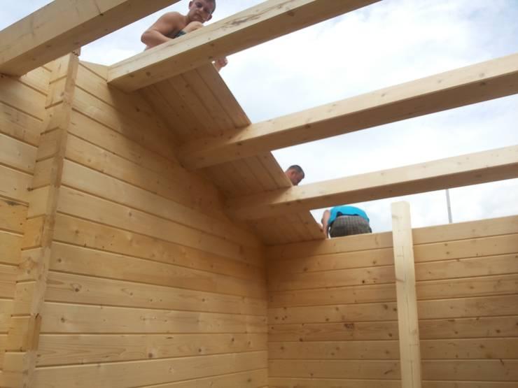 La piccola casa nel giardino costruire un capannone perfetto for Piani di casa stile tetto capannone