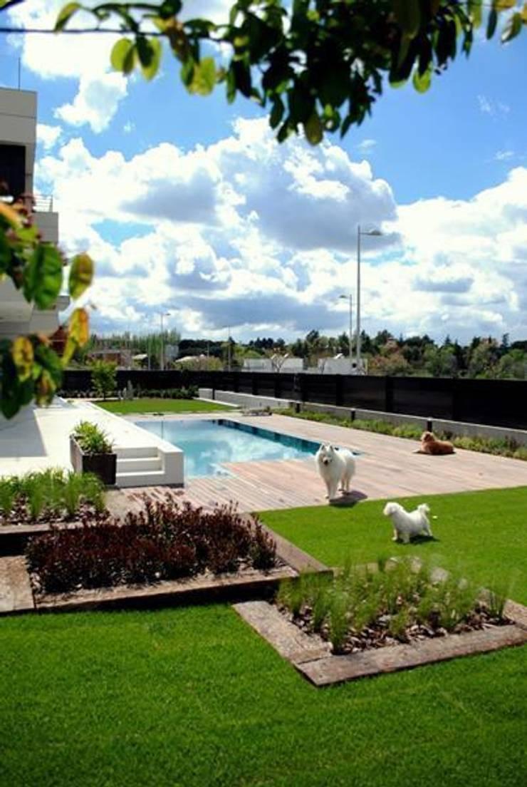 Jard n contemporaneo de la paisajista jardines con alma for Paisajismo para piscinas