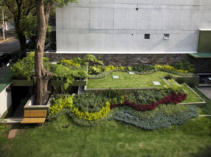jardines mexicanos 10 dise os frescos y modernos On jardines pequenos mexicanos