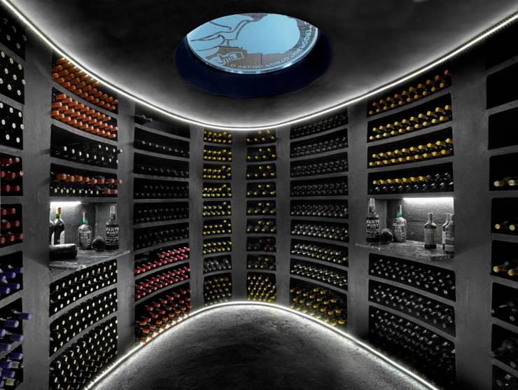 Helicave wijnkelder ondergronds proeverijtje door van dijk maasland homify - Moderne wijnkelder ...