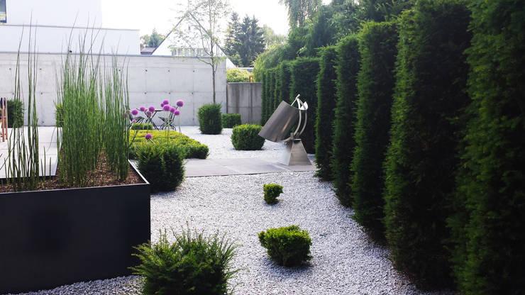 Moderner hausgarten in krefeld for Gartengestaltung abgrenzung zum nachbarn