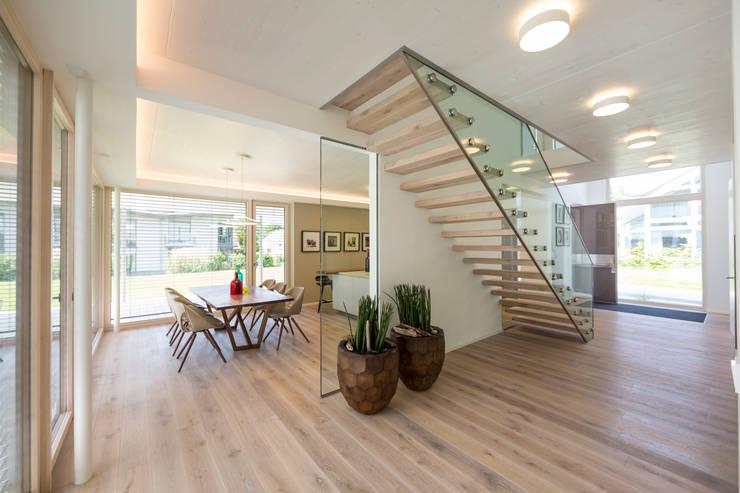 modern Corridor, hallway & stairs by Die HausManufaktur GmbH