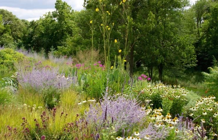 Garten gestalten mal anders wild ist jetzt angesagt - Garten strukturieren ...