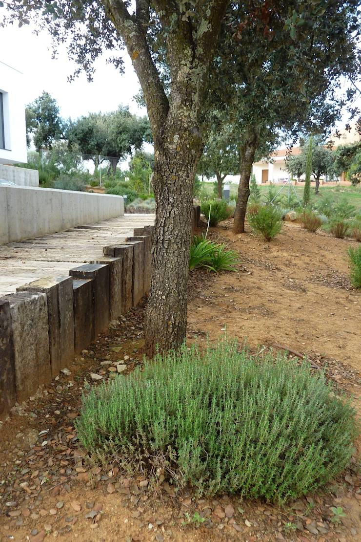Arquitectura contempor nea jard n naturalizado de ngel for Arquitectura de jardines