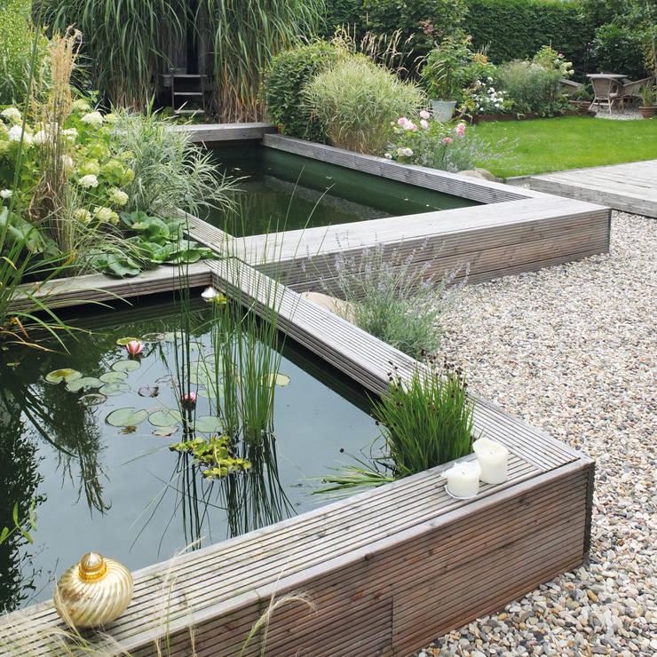 Jardines de estilo minimalista por qbus architektur  & innenarchitektur