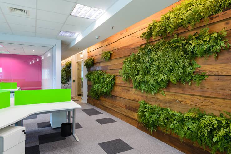 실내 정원 디자인을 위한 11가지 아이디어