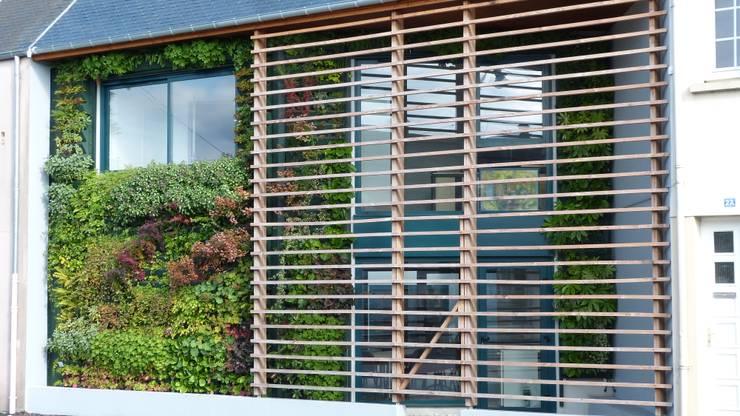 10 Id Es Modernes Pour Couvrir La Fa Ade De Votre Maison