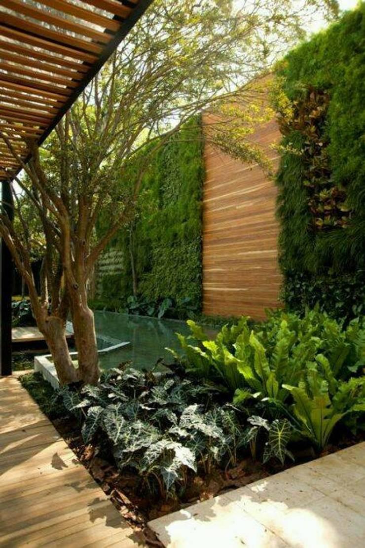 Jardines verticales de green gallery homify for Proyecto jardines verticales