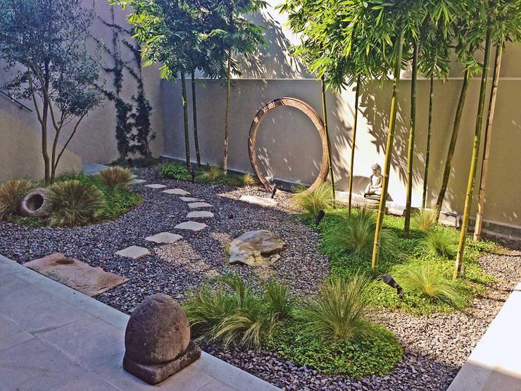 Jardin Principal : Jardines de estilo moderno por Terra