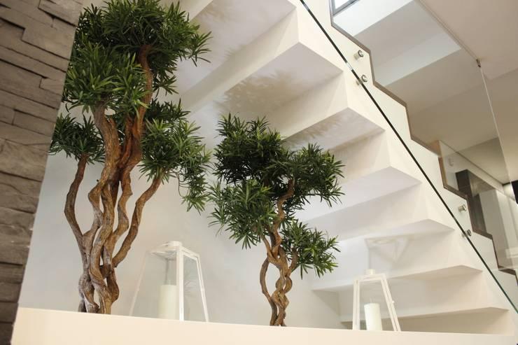 jardines bajo la escalera 10 ideas extraordinarias On jardin interior bajo escalera