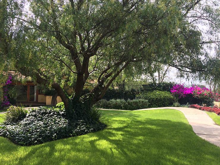 Jardim frente de casa 7 ideias fant sticas for Casas para herramientas de jardin