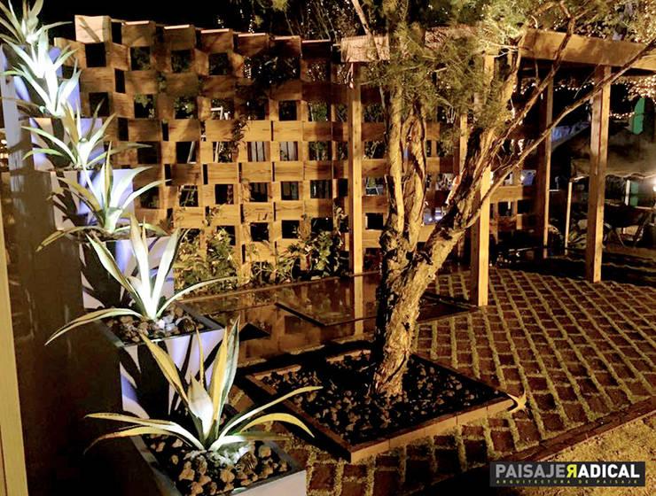 NAGASAKI - MEXICAN PATIO: Jardines de estilo moderno por Paisaje Radical