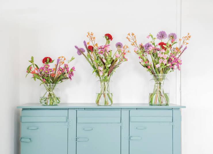 passende pflanzen und blumen f r jeden wohntyp. Black Bedroom Furniture Sets. Home Design Ideas