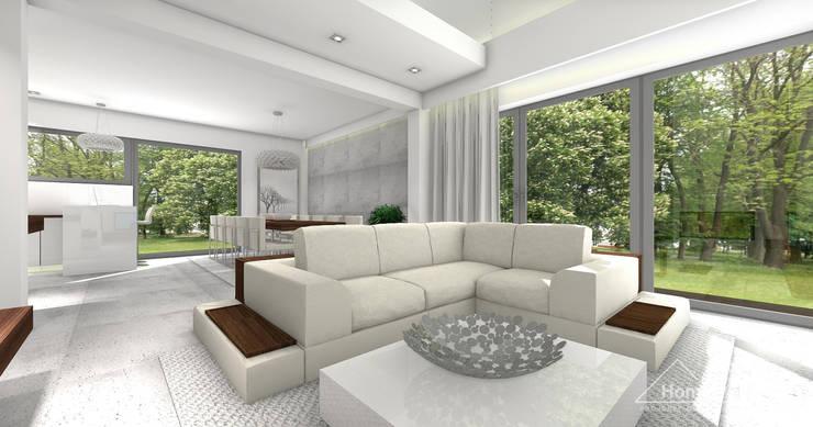 Salones de estilo moderno de HomeKONCEPT | Projekty Domów Nowoczesnych