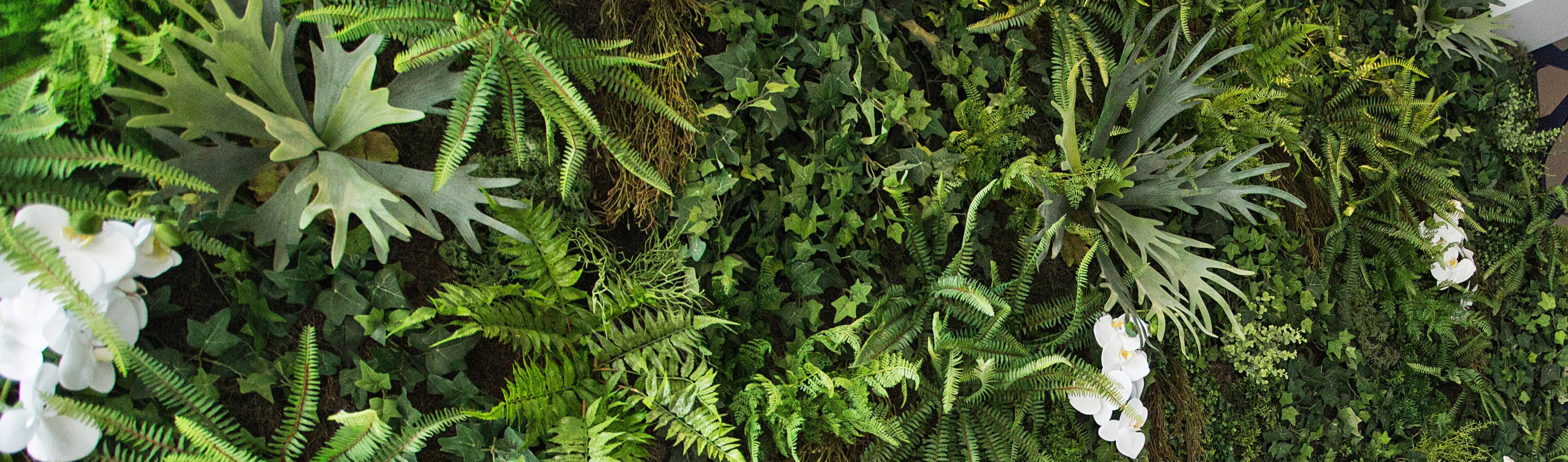Vertical Garden—Jardim Vertical e Paisagismo Corporativo