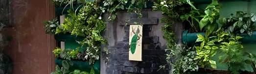 jardinria xochimilco