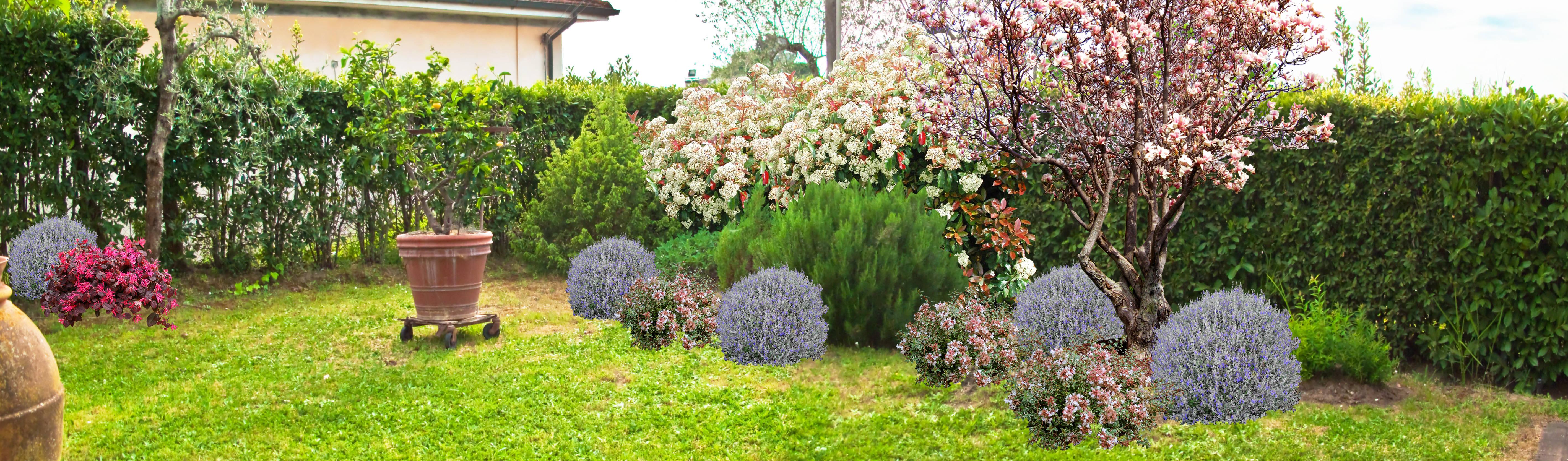 Architetto Di Giardini giardino di campagna - casa ec di aplusp architettura e