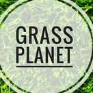 Grass Planet